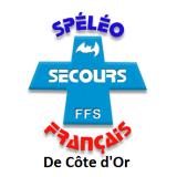 ssfv21