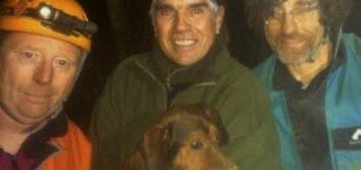 le-chien-iguane-sauve-par-des-speleologues-1511208998